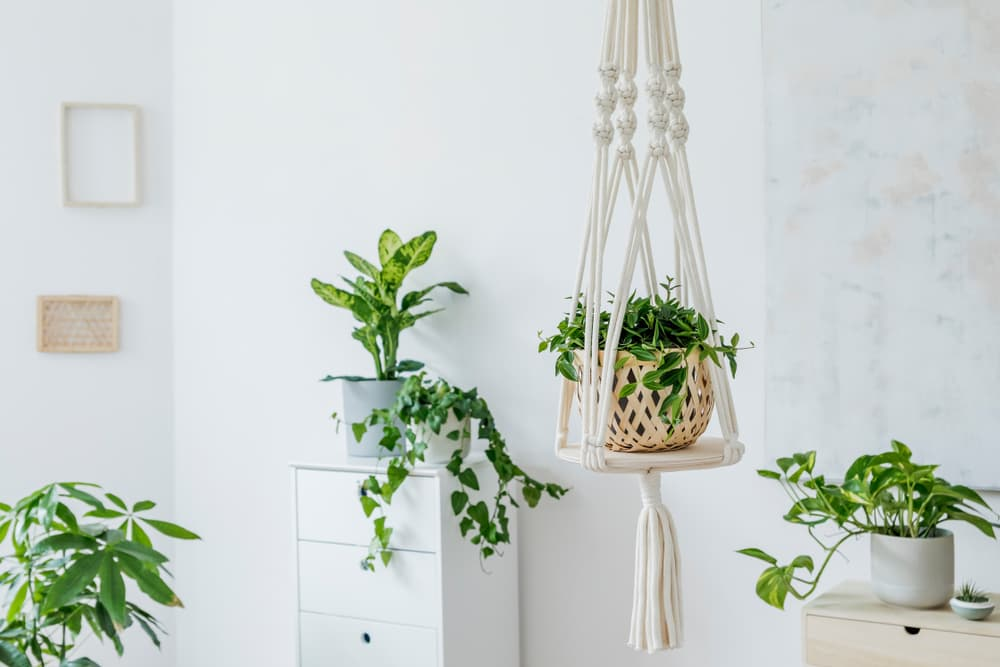6 DIY Projects Worth Trying this Summer