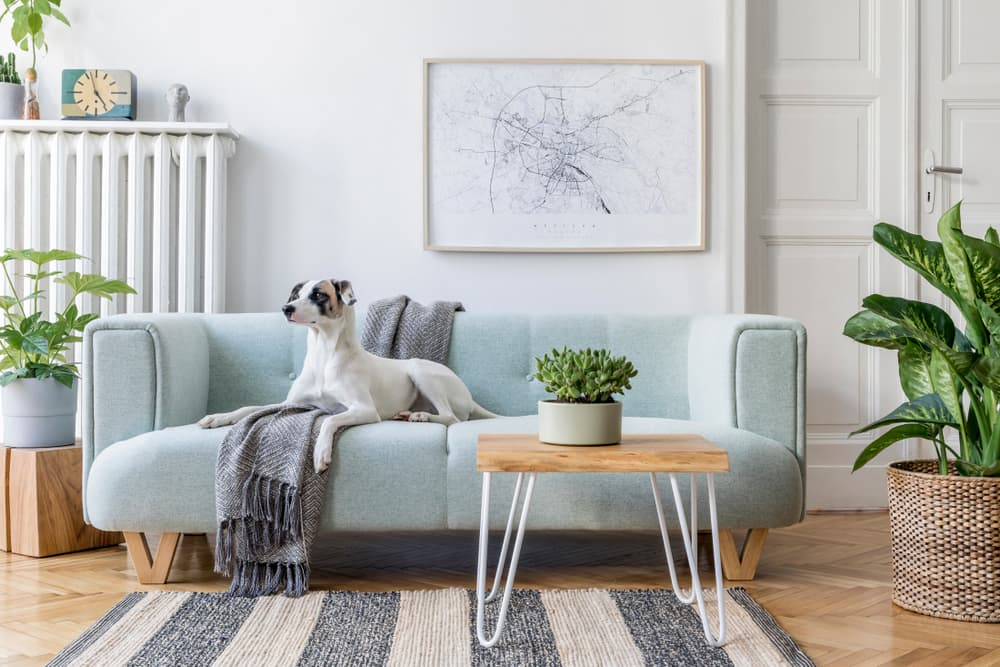 6 Ways to Make Your Apartment Feel Bigger