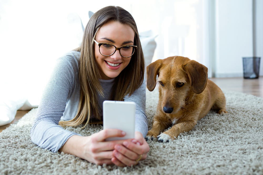 Tips for Keeping Your Pet Happy in Your Apartment