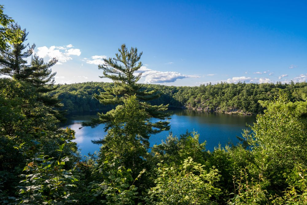 the-best-spots-to-hike-around-ottawa